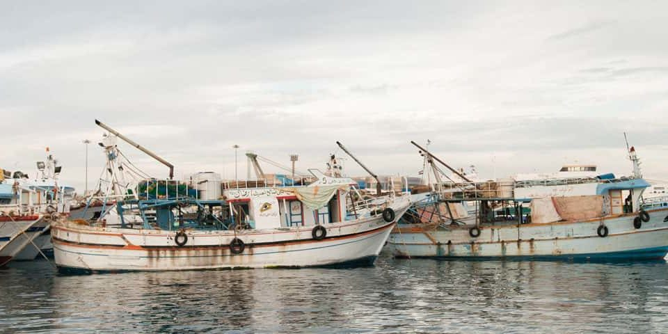 Internet satelital sector pesquero