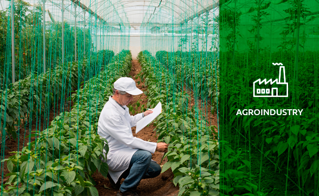 1-pic-agroindustry