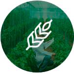 sector-agroindustrial-axess