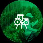 sector agroindustria